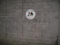 dog-washing-logo-wall